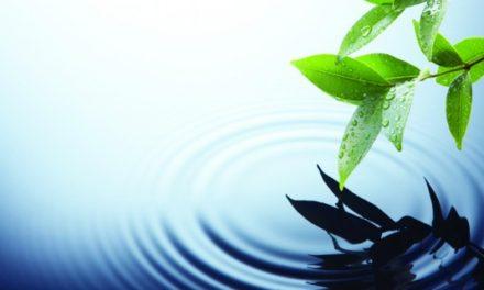 L'Eau, une approche sensible et scientifique pour un changement en profondeur